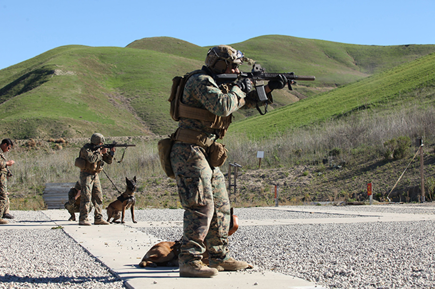 U.S. Special Operations units are using faulty rifle sights
