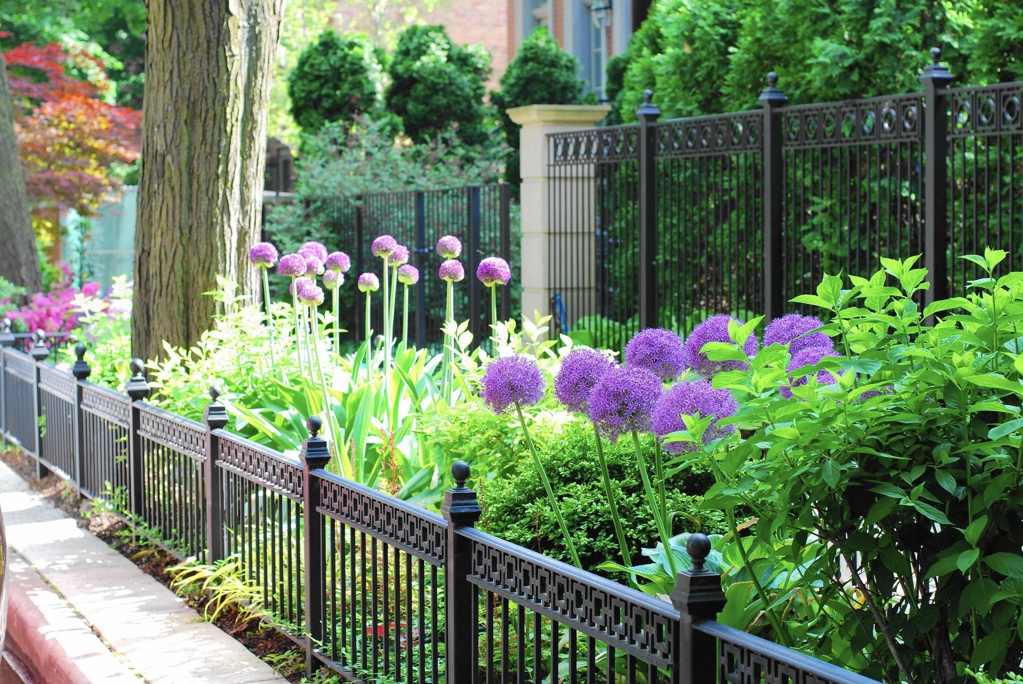 How to make over your parkway garden - Chicago Tribune Zone Garden Border Designs Html on backyard design zone 6, garden design zone 8, rock garden plants zone 6, garden design zone 4, rain garden plants zone 6, garden design zone 9,