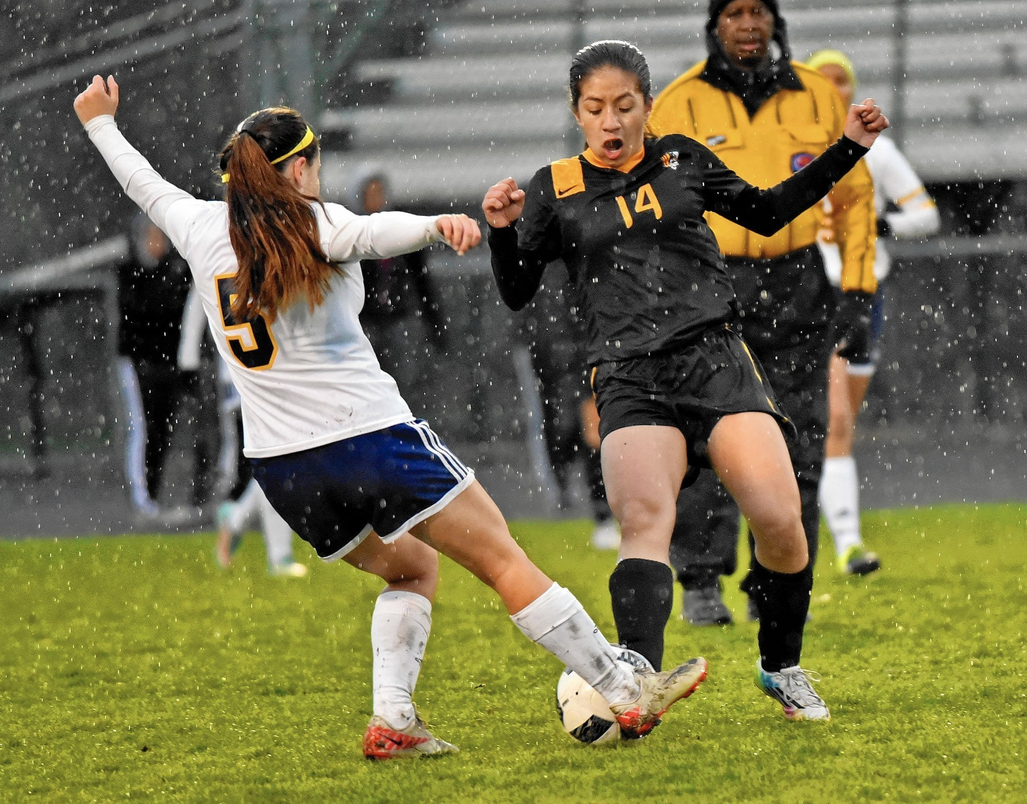 elmwood park girls See the girls junior varsity soccer schedule for the crusaderss schedules include start time, directions and scores for the elmwood park memorial girls junior.