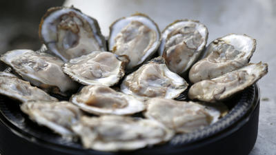 Maryland set to conduct more detailed oyster survey after Assembly passes controversial bill