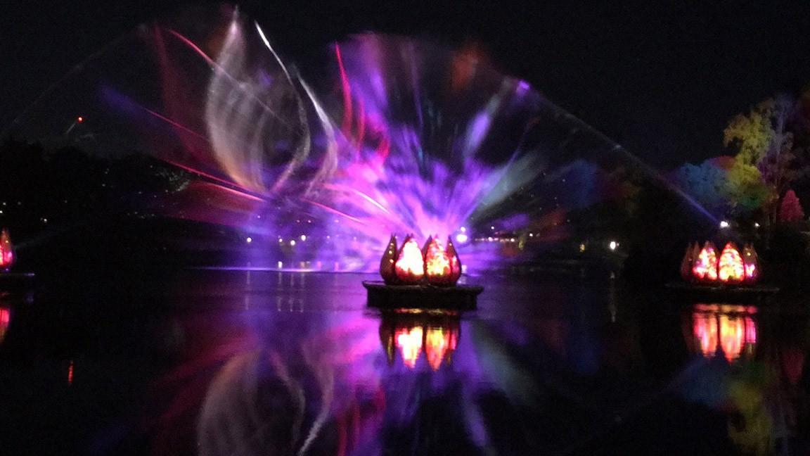 scenes from disney s animal kingdom s rivers of light show