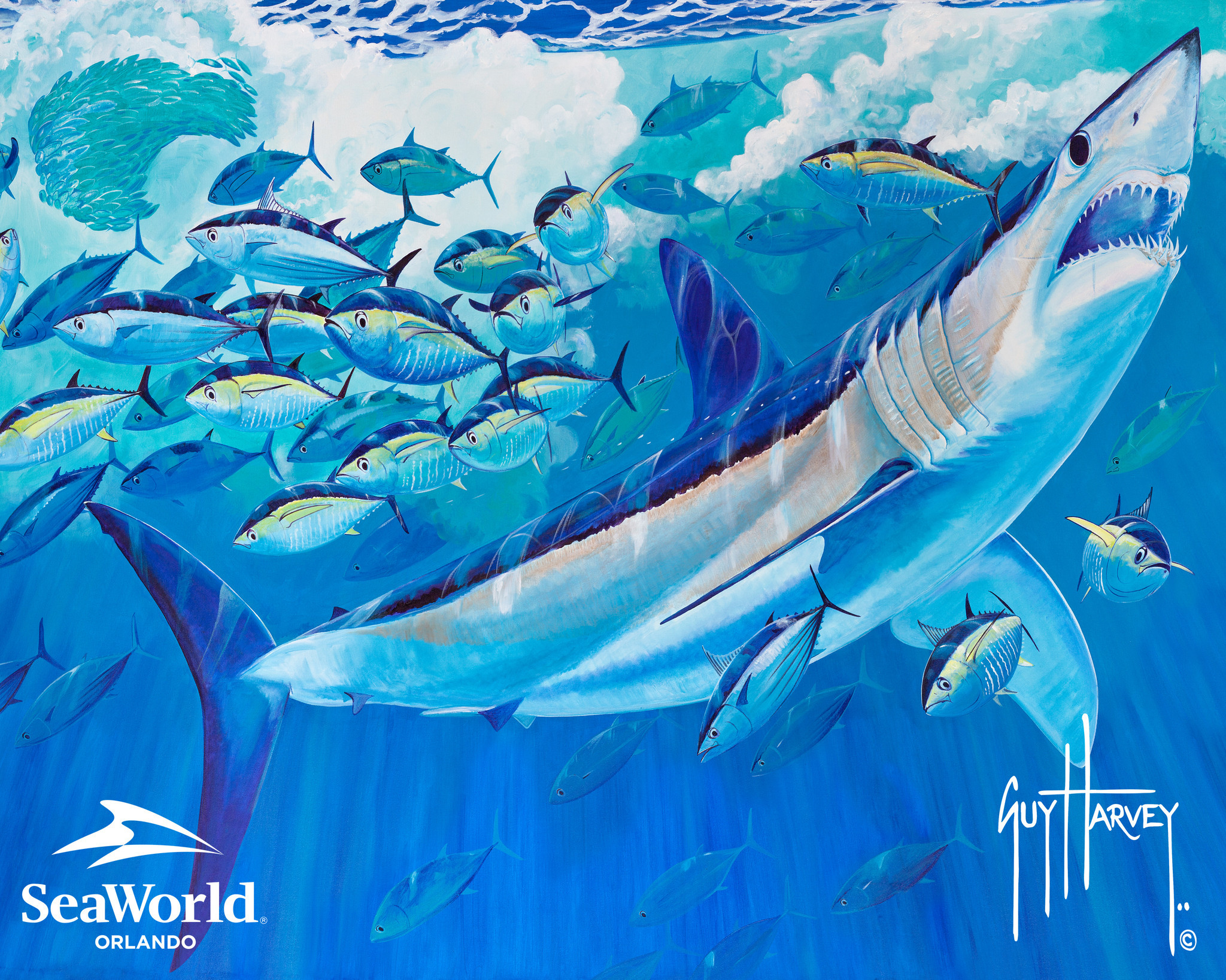 Sea world??