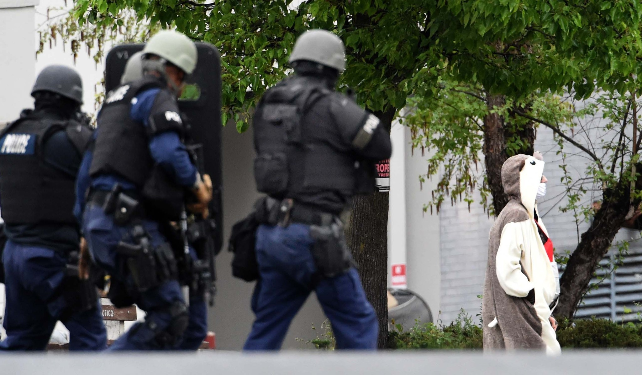 Man wearing animal outfit shot by police outside Baltimore TV station - Baltimore Sun : car fox costume  - Germanpascual.Com