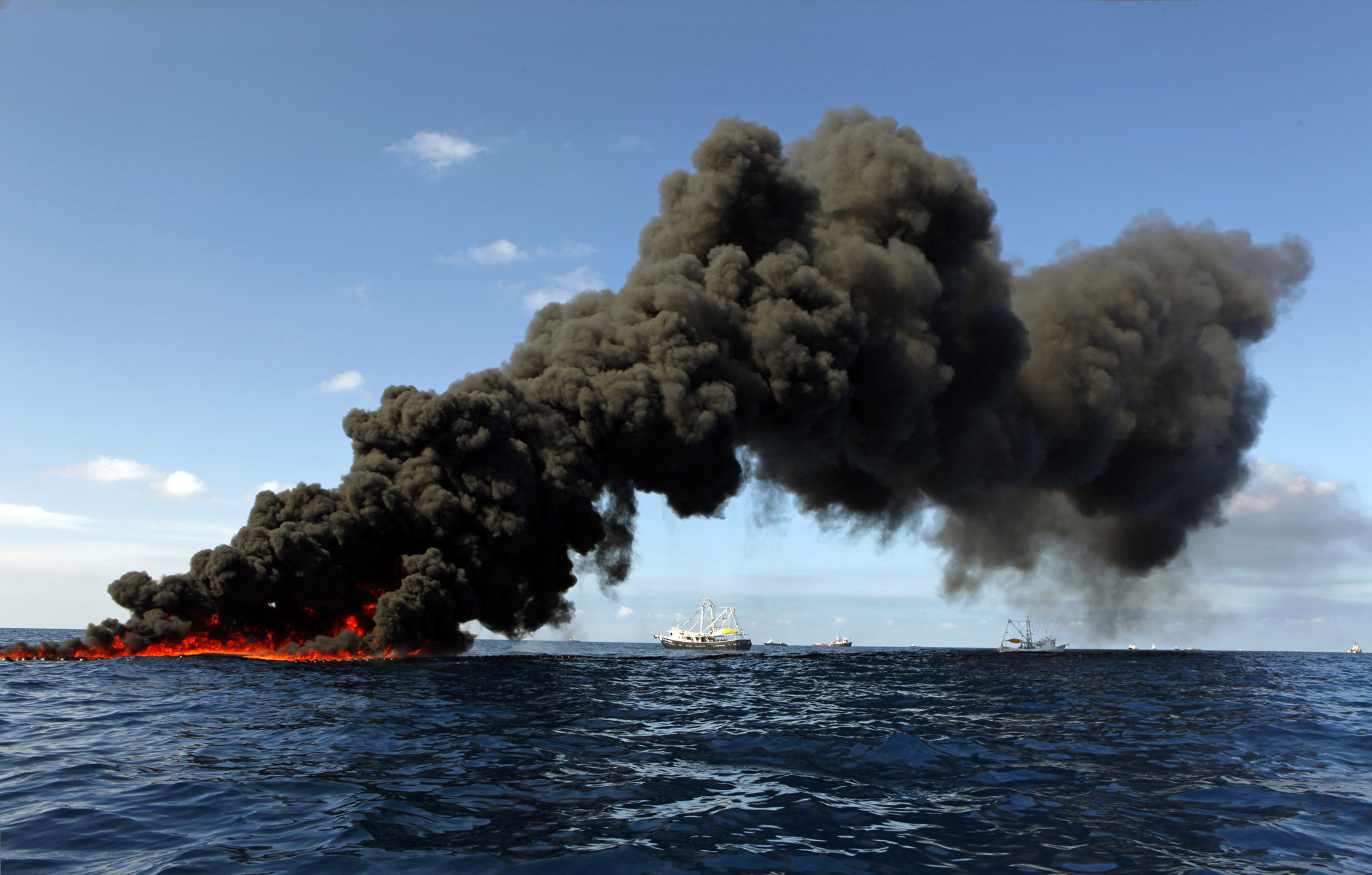 gulf of mexico oil spill When the gulf of mexico oil spill began in 2010, the fda, the national oceanic and atmospheric administration's (noaa) national marine fisheries service.