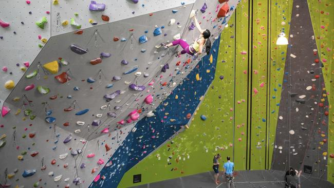 Climbing gym business plan