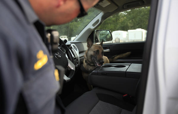A Ukiah, Calif., police officer works with a dog to search for drugs or cash in a motorist's car on May 14, 2014. (Francine Orr/ Los Angeles Times)