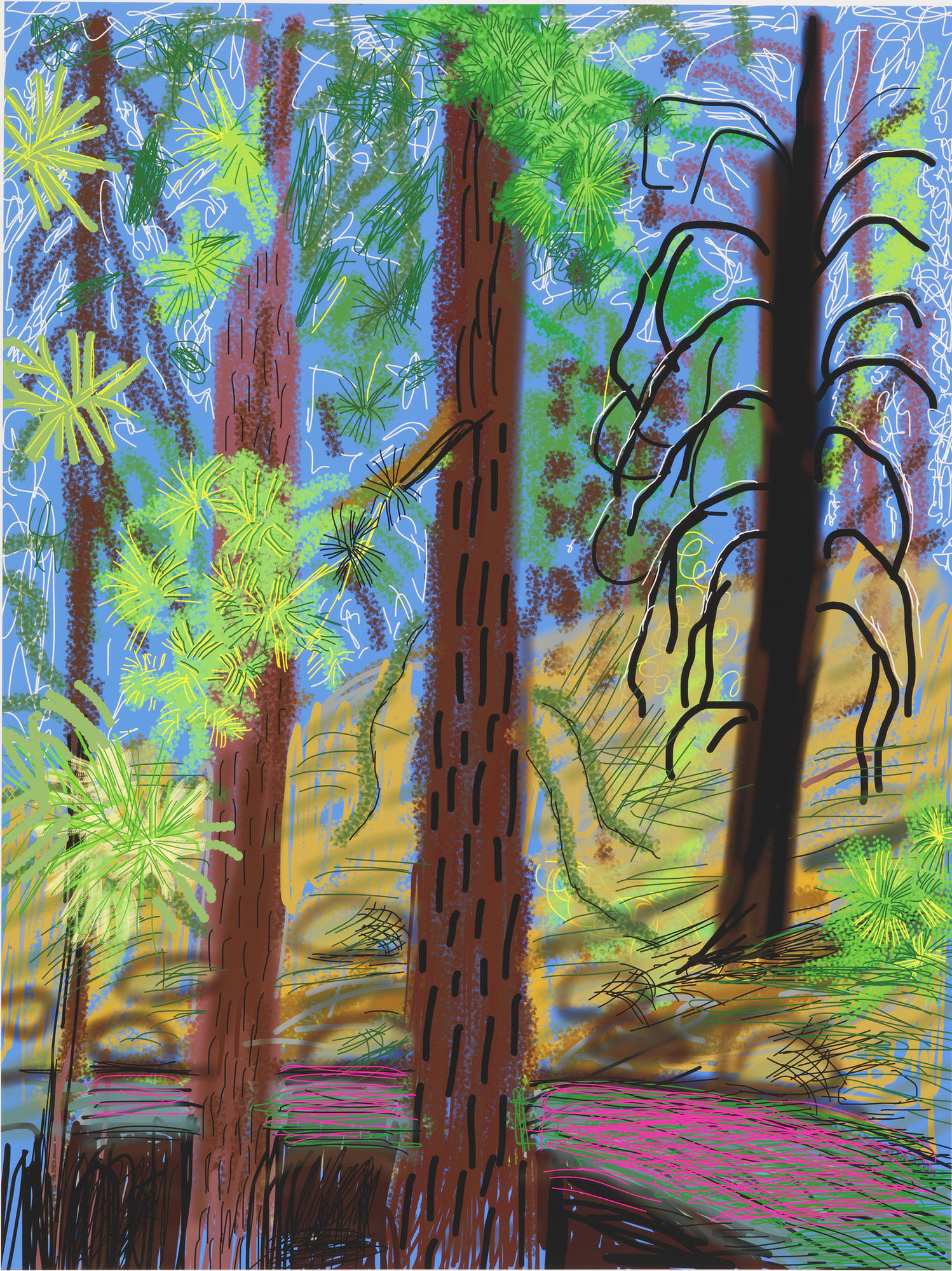 "David Hockney's ""Untitled No. 6"" from ""The Yosemite Suite,"" 2010."