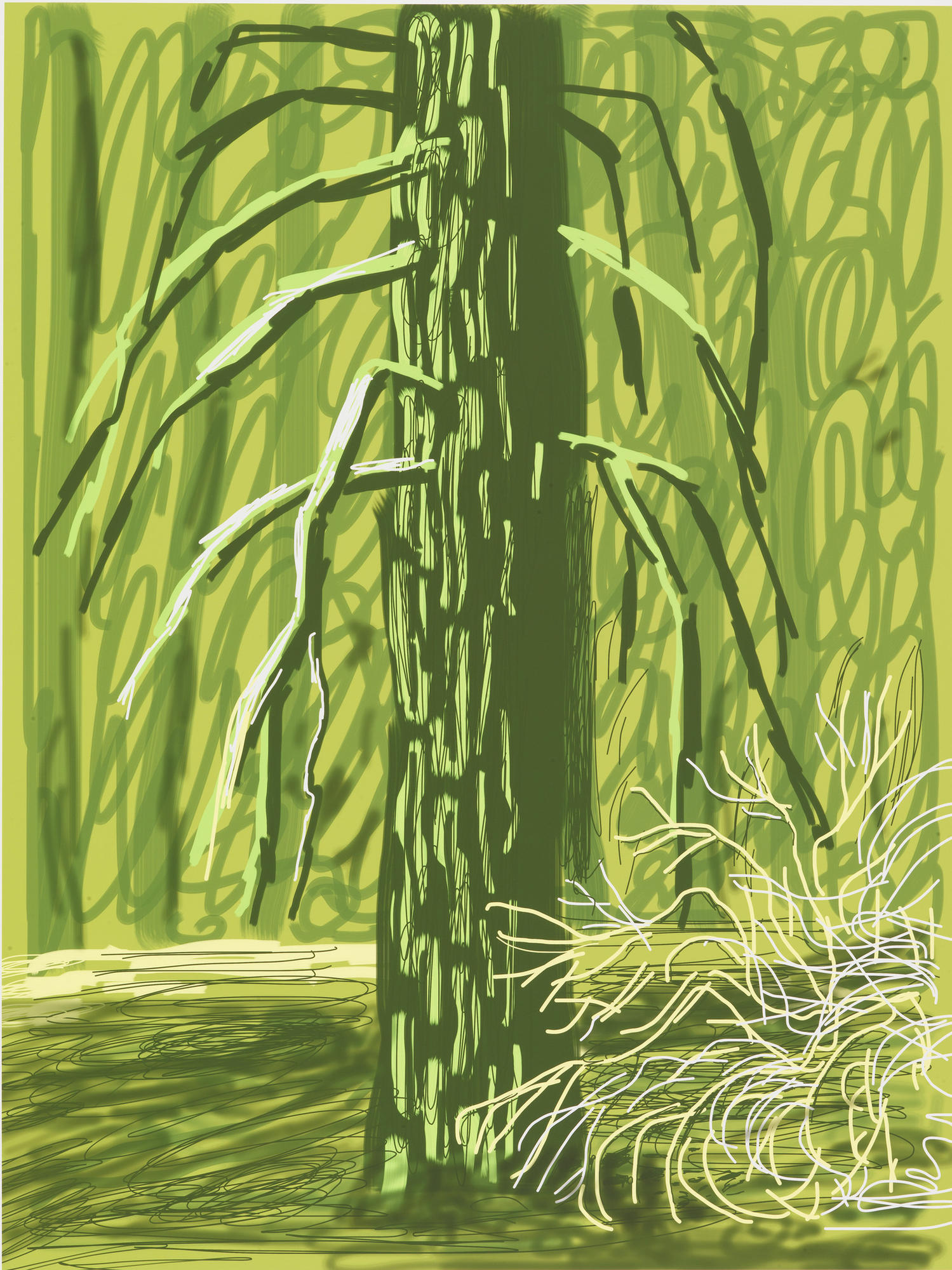 "David Hockney's ""Untitled No. 18"" from ""The Yosemite Suite,"" 2010, iPad drawing printed on paper."