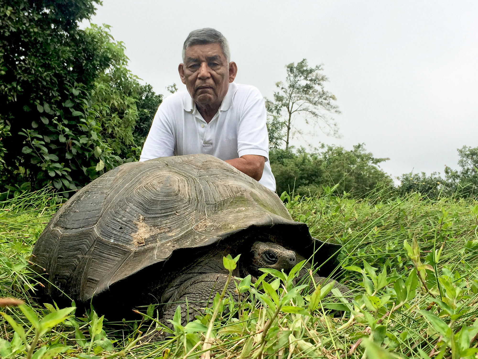 """Don Fausto"" with an Eastern Santa Cruz tortoise"