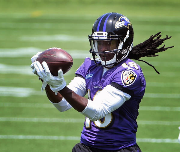 Ravens' Dennis Pitta and Breshad Perriman are back in action