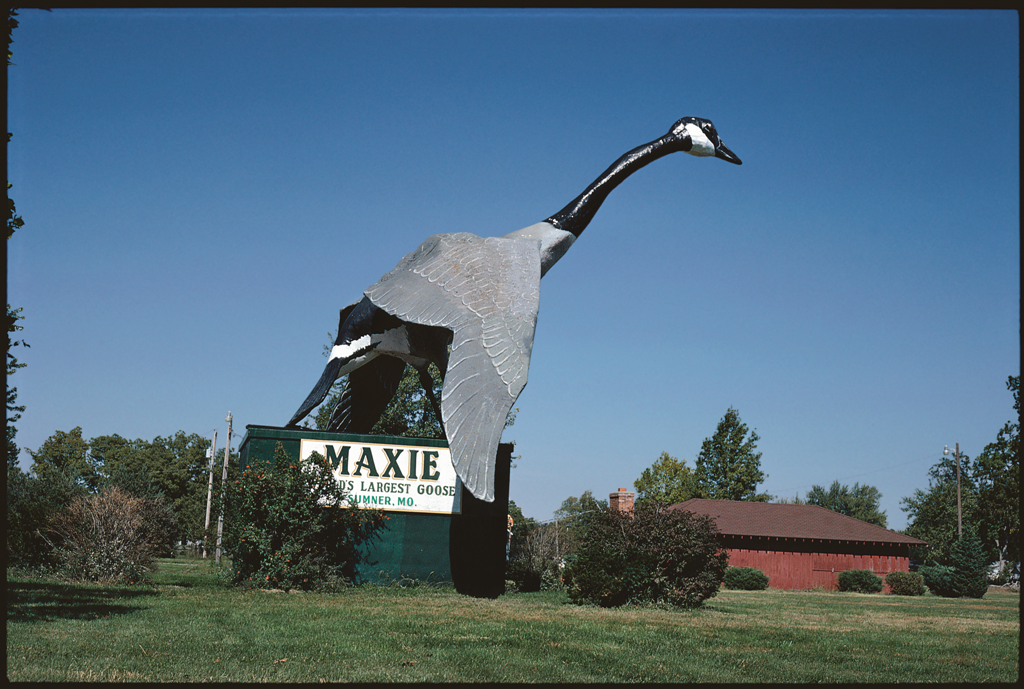 Maxie, World's Largest Goose, Sumner, Missouri, 1988.