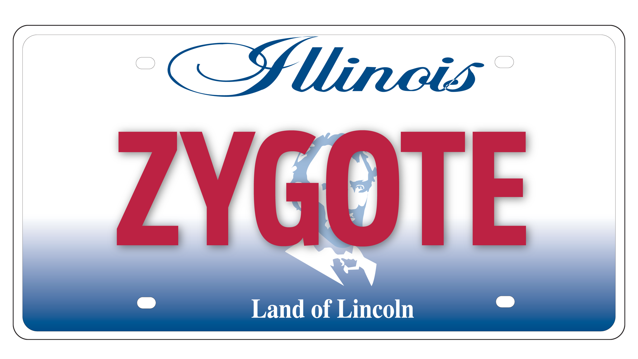 Illinois drivers so vain, but not all plates get state OK - Chicago ...