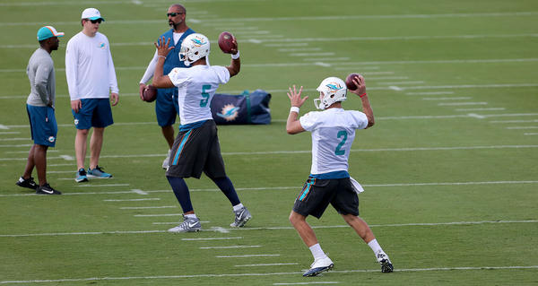 Dolphins cut quarterback Logan Thomas