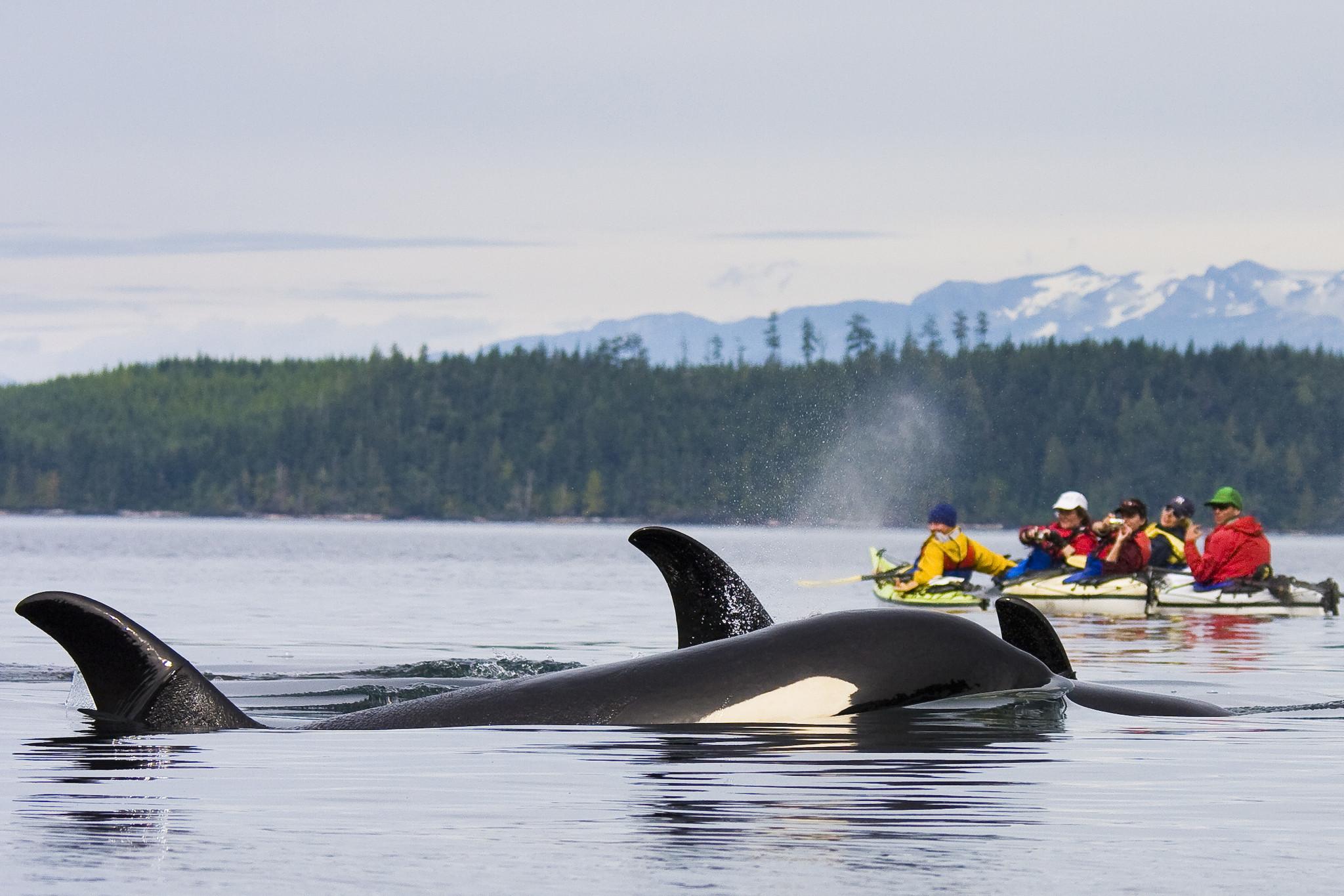 Orca Quarry Vancouver Island