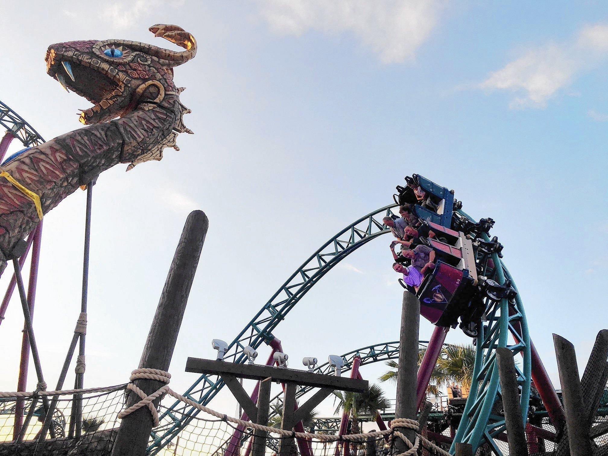 Cobra 39 s curse roller coaster busch gardens tampa pictures - Busch gardens tampa roller coasters ...