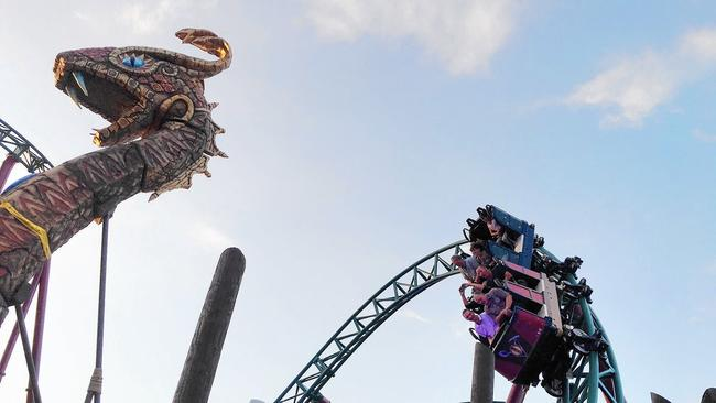 Pictures: Cobrau0027s Curse Roller Coaster At Busch Gardens Tampa