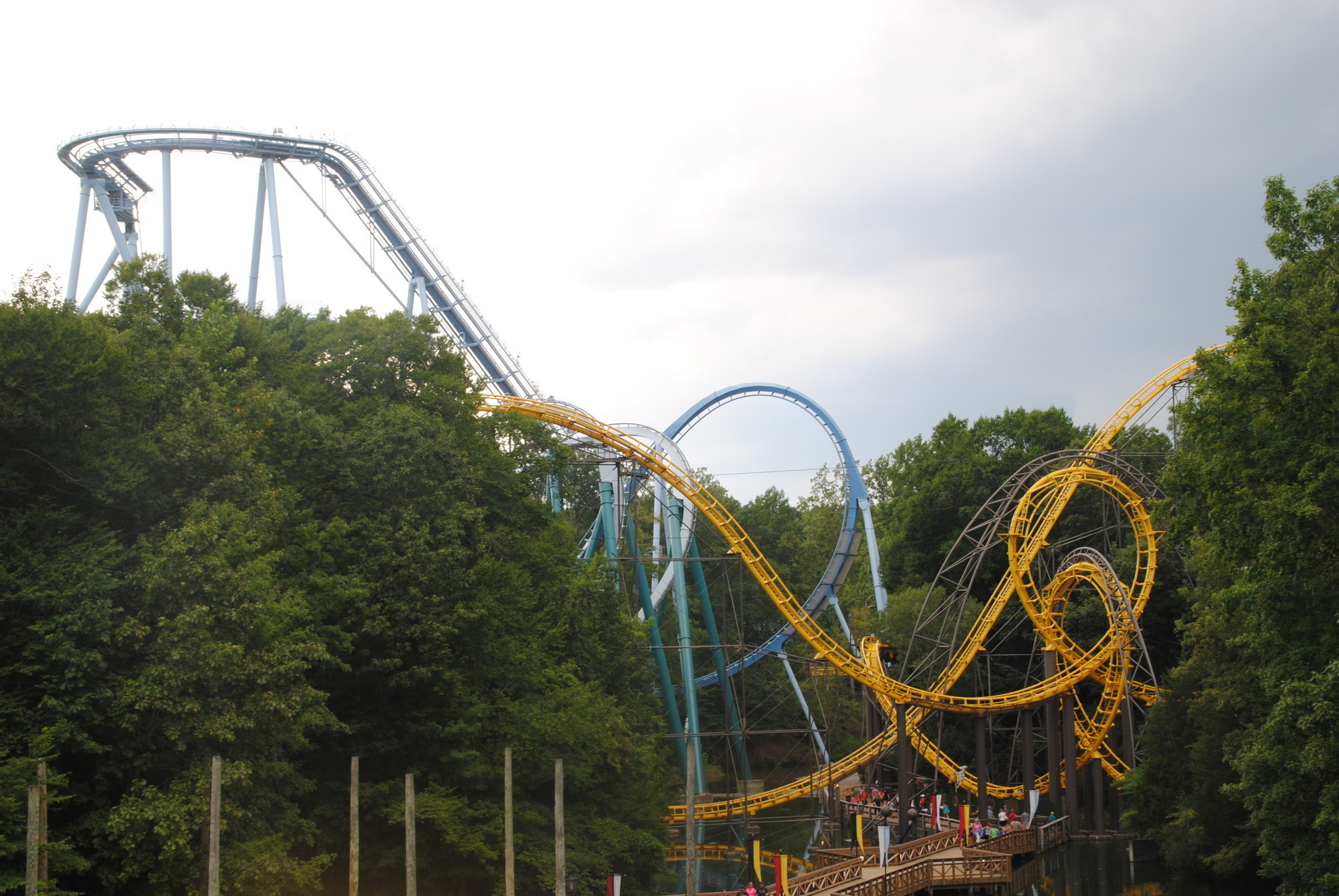 Riders Stuck On Roller Coaster Removed Safely At Busch Gardens Williamsburg Daily Press