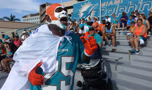 Dolphins announce training camp schedule; canopy added over seating area