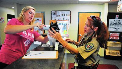 Animal Control: How to coexist with wildlife