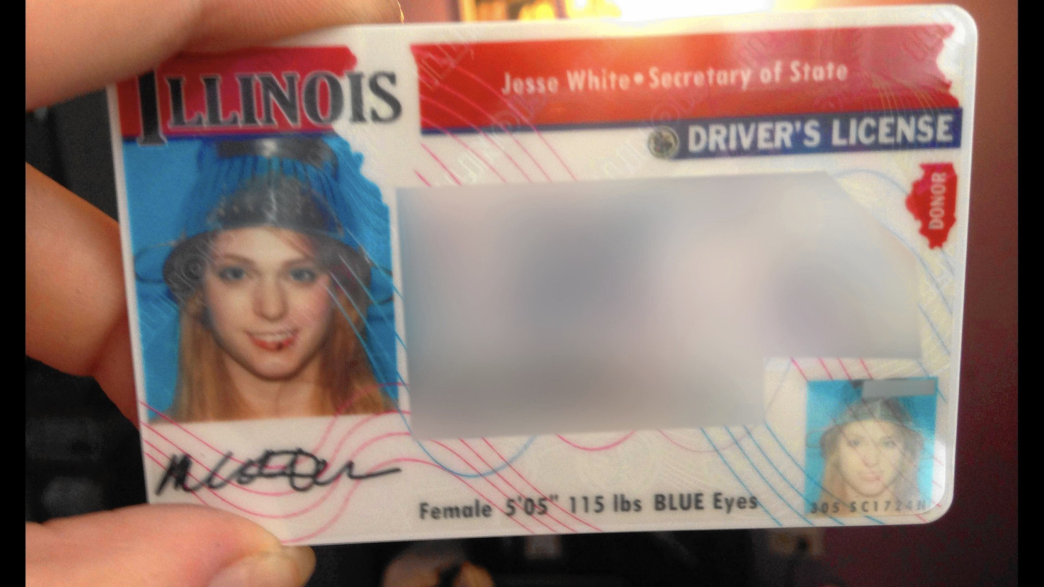 Decision to ban colander from drivers license photo strains decision to ban colander from drivers license photo strains belief chicago tribune buycottarizona