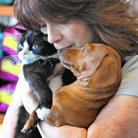 Ruth And Idgie Dog And Cat Update