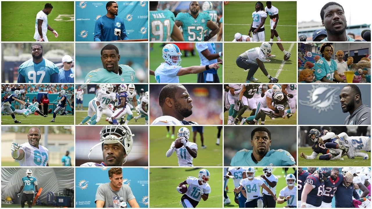 Sfl-the-top-50-2016-miami-dolphins-20160727