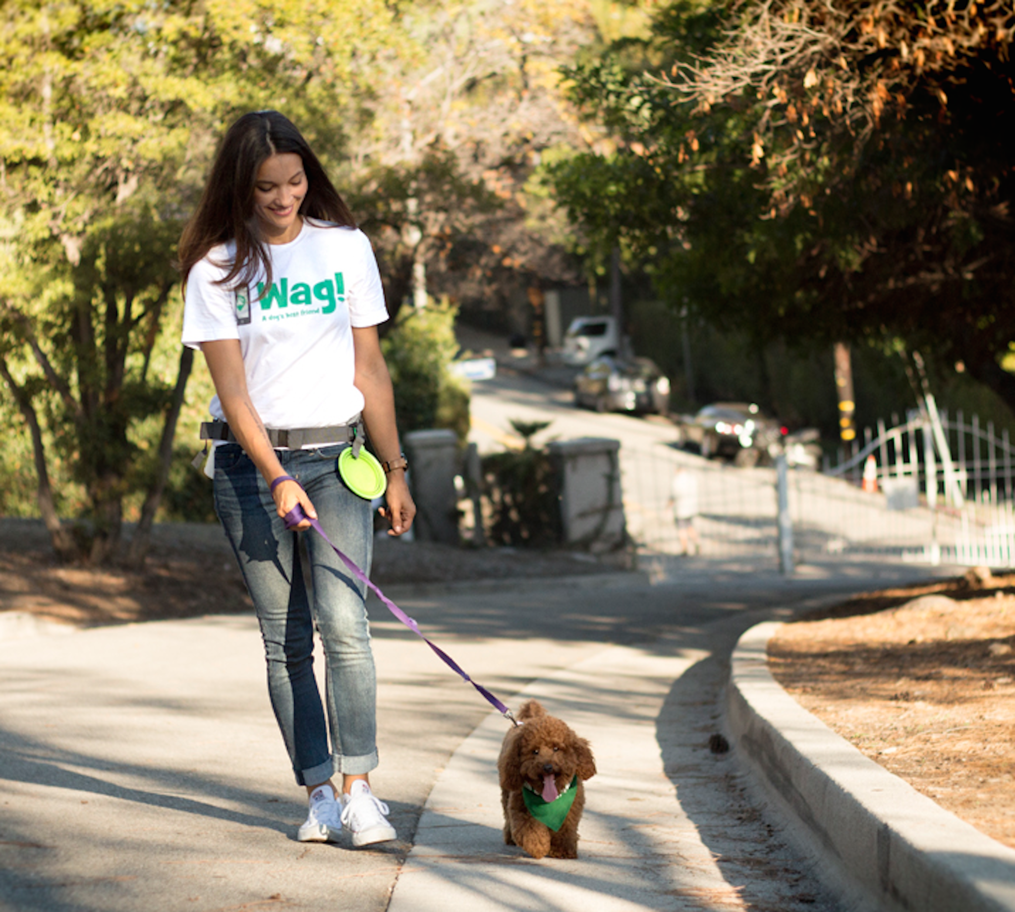 Dog-walking start-up Wag quickly grows from pup to fierce competitor