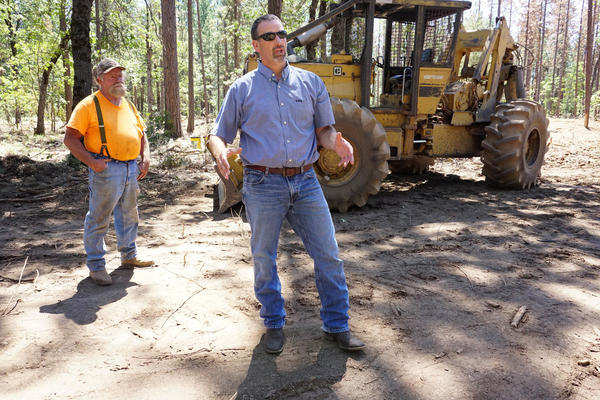 Assemblyman Brian Dahle (R-Bieber) talks about how thinning crowded trees will keep the forest healthy. In the background is logger Lonnie Blunt, 63, of Burney. Dahle proposed a bill last year that would direct cap-and-trade money to help offset the costs of biomass plants.