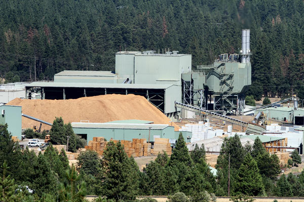 Burney Forest Power, a biomass plant, operates on the same property as logging business Shasta Green in Burney.