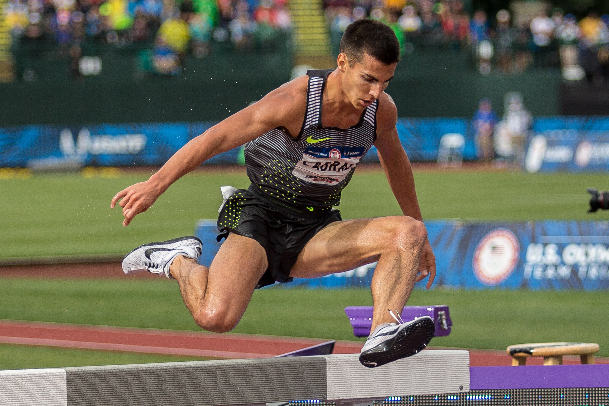 Live Like a Pro: Olympic Steeplechaser Donn Cabral forecasting