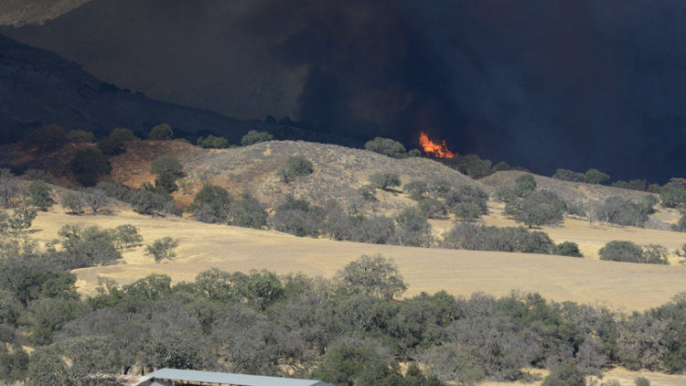 Wildfire rages in Santa Barbara County