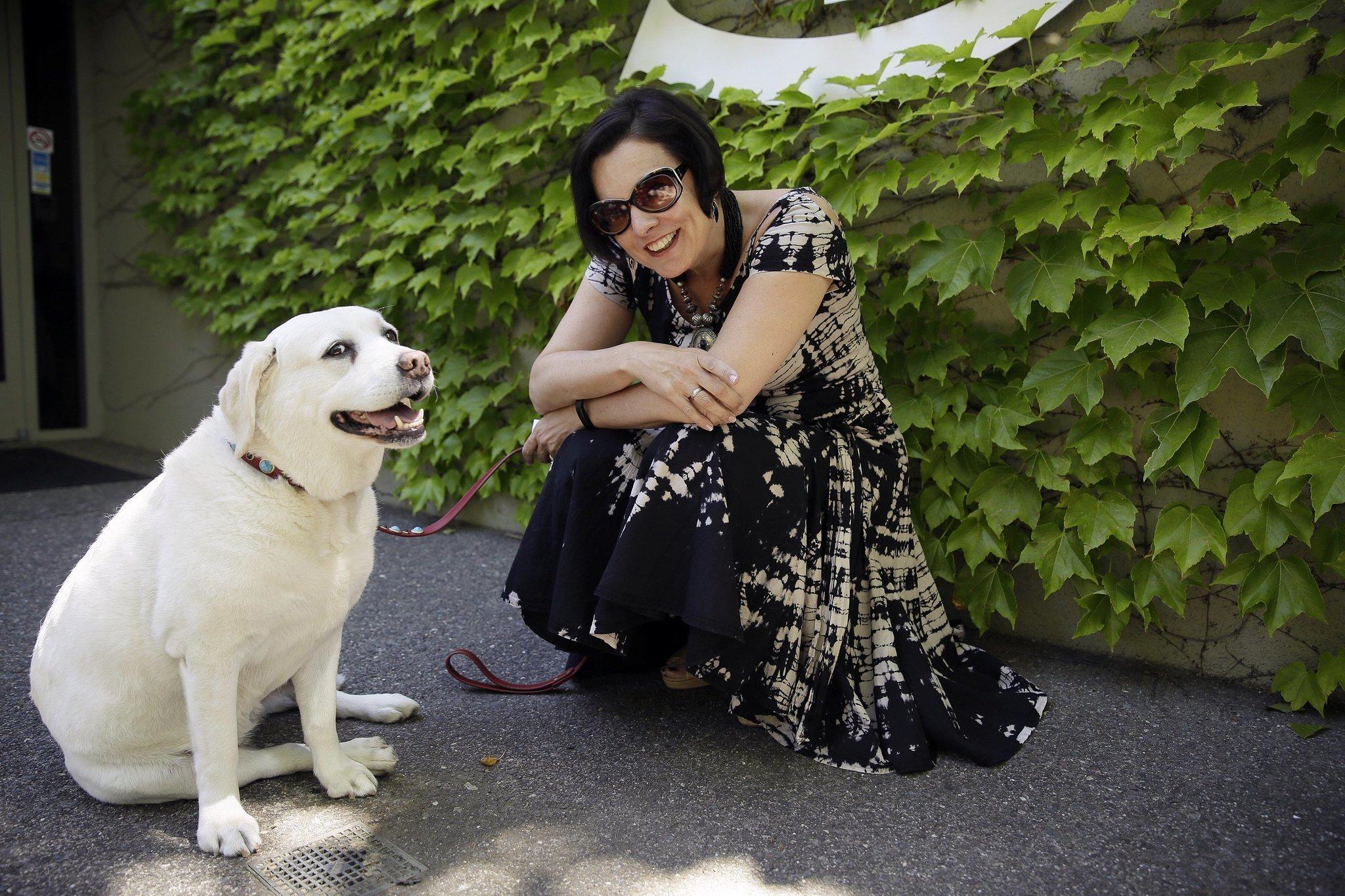 Dog Friendly Wineries Napa Valley