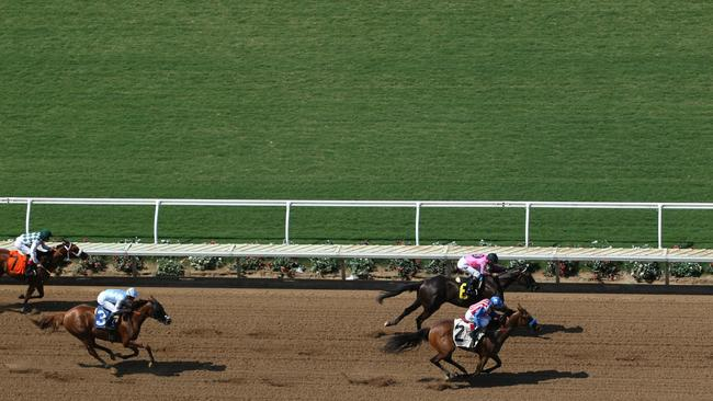 Two Horses Were Euthanized One In Training And The Second Race At Del