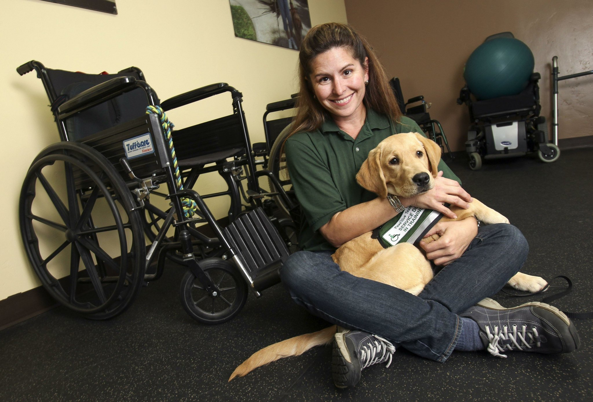 Training For Therapy Dogs San Diego