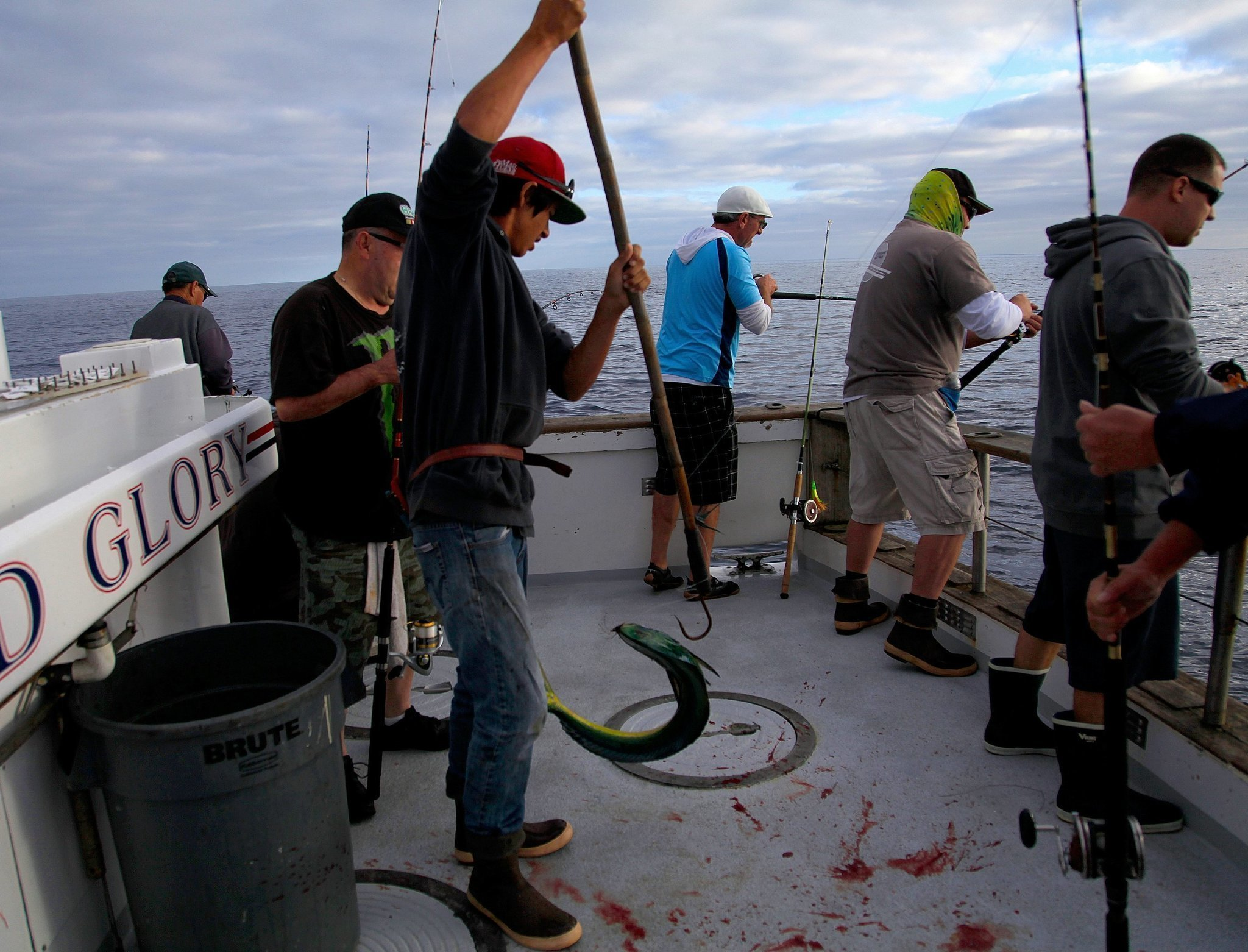 California fishermen face challenges the san diego union for Fishing license san diego