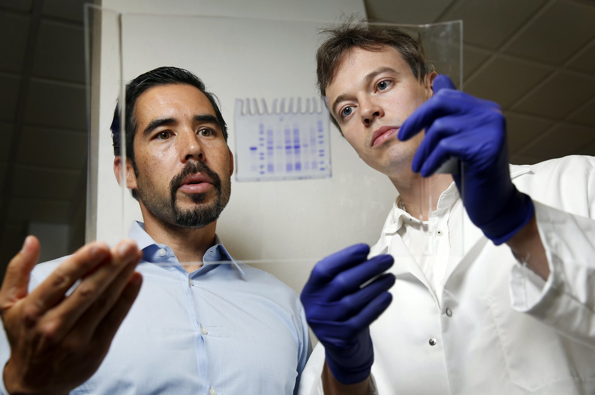 New DNA code makes synthetic proteins