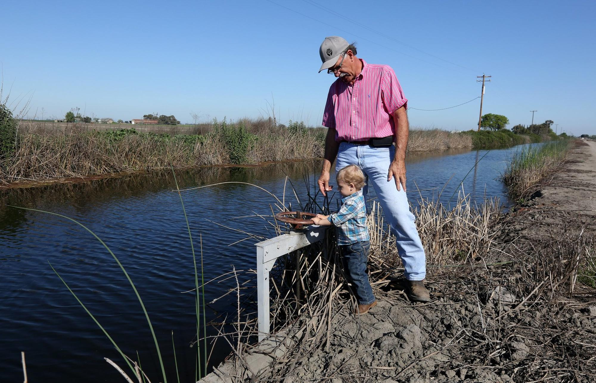 FILE - In this March 27, 2015 file photo, farmer Rudy Mussi watches as his grandson Lorenzo tries to turn a water valve on his almond orchard in the Sacramento-San Joaquin Delta