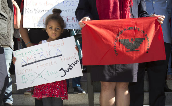Camila Cortez, 4, the granddaughter of a farmworker, joins others at a rally calling for passage of a bill that would require farmworkers to receive overtime after working eight hours. (AP Photo/Rich Pedroncelli)