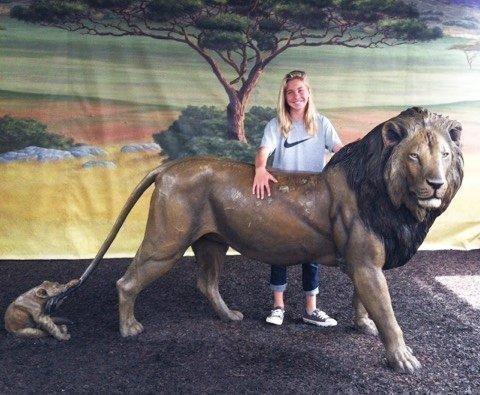 Essay on save the wildlife