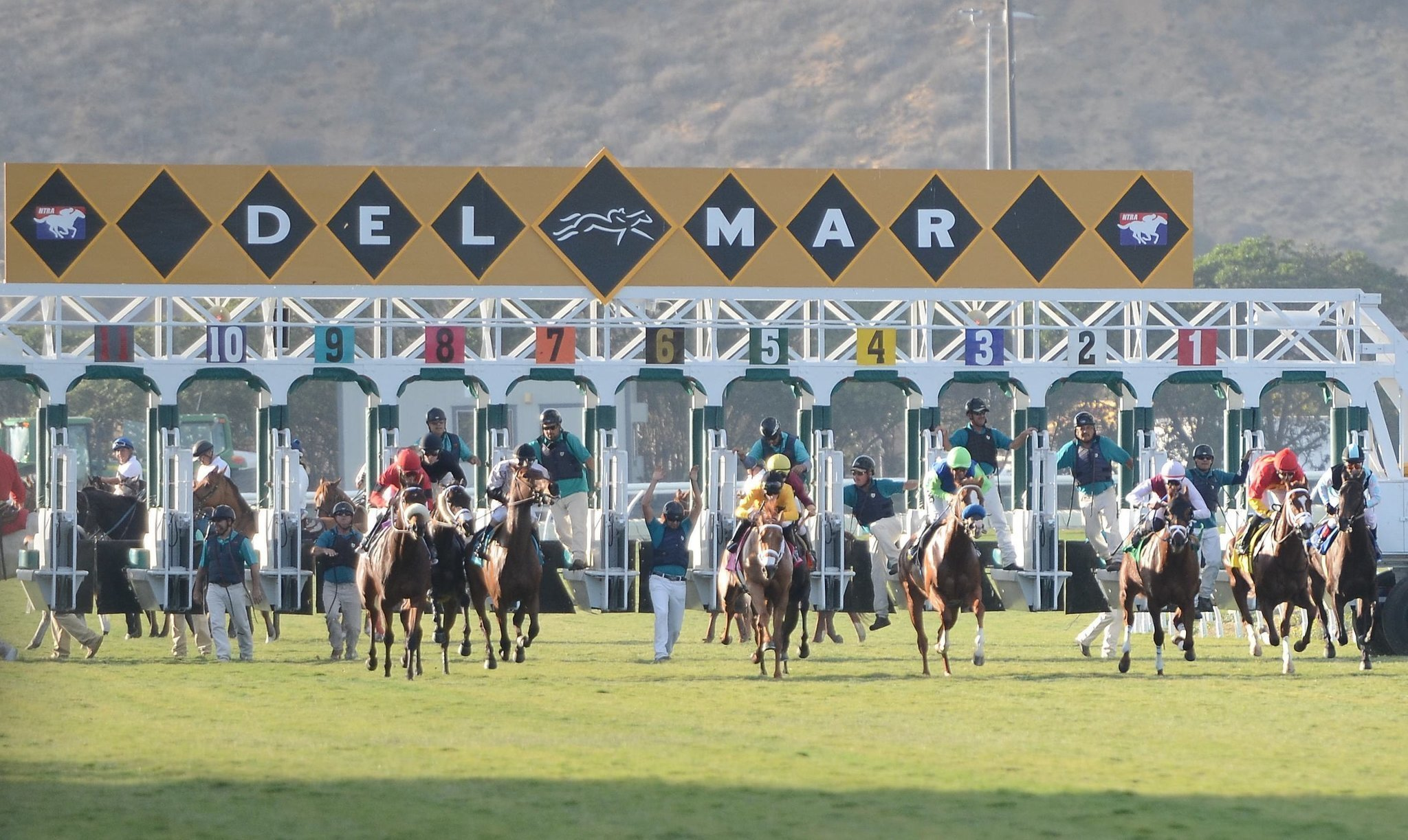 breeder s cup preview on tap at 2015 del mar fall season del mar