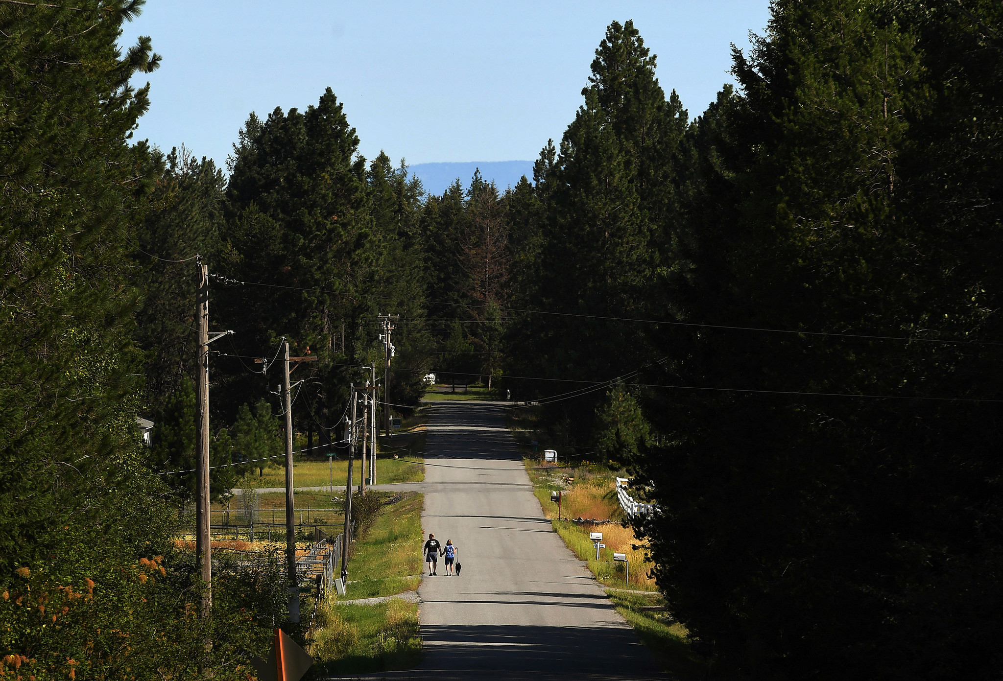 In the Pacific Northwest, members of survivalist movements are growing in number