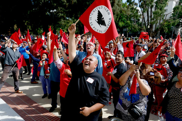 Fabric Fierros of Salinas and other United Farm Workers members cheer as Senate President Pro Tem Kevin De Leon (D-Los Angeles) appears in a balcony during a rally after California lawmakers passed legislation that would expand overtime pay for farmworkers. (Gary Coronado / Los Angeles Times)