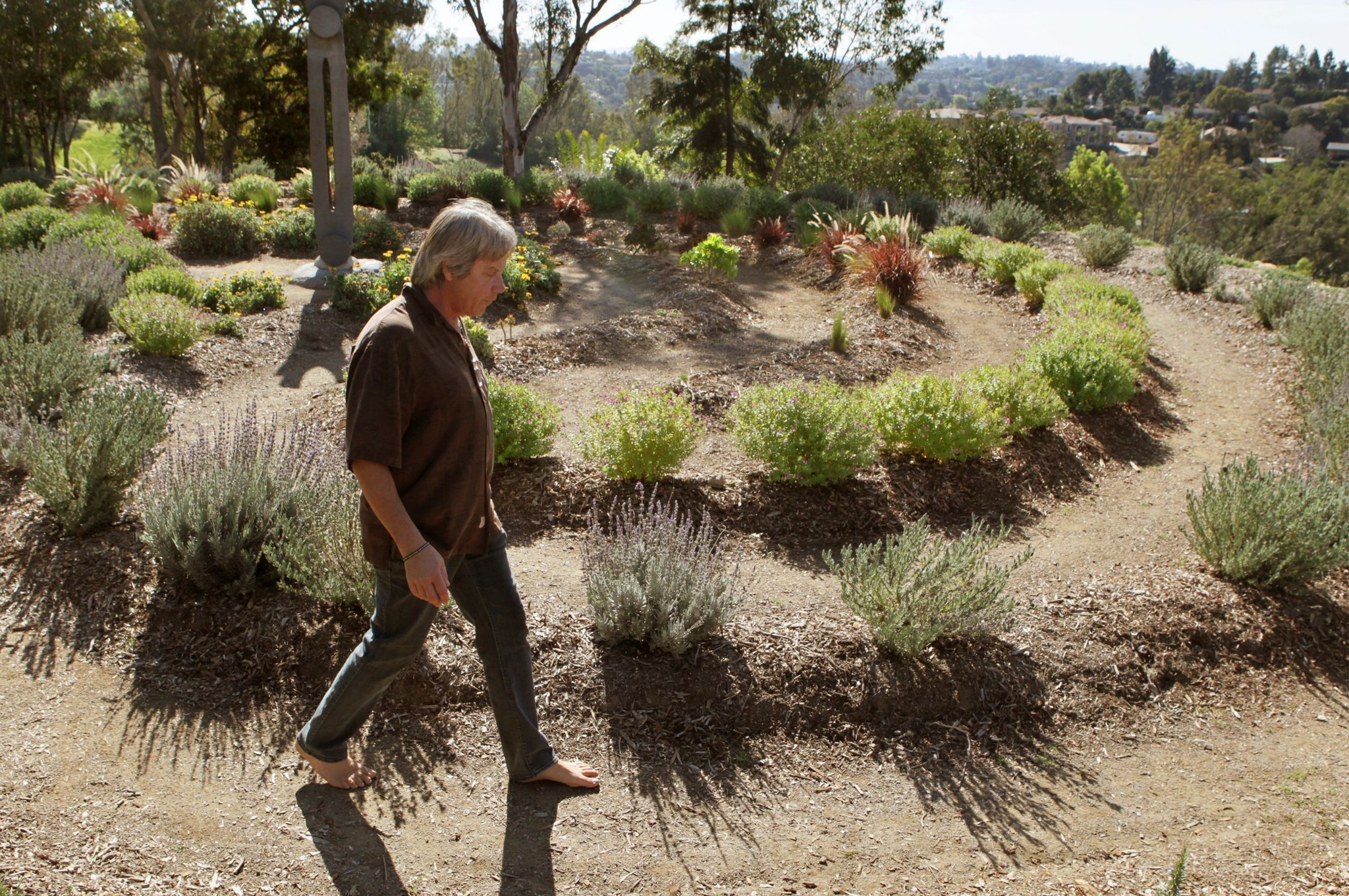 Gardens reign atop hill in Vista\'s Brengle Terrace - The San Diego ...