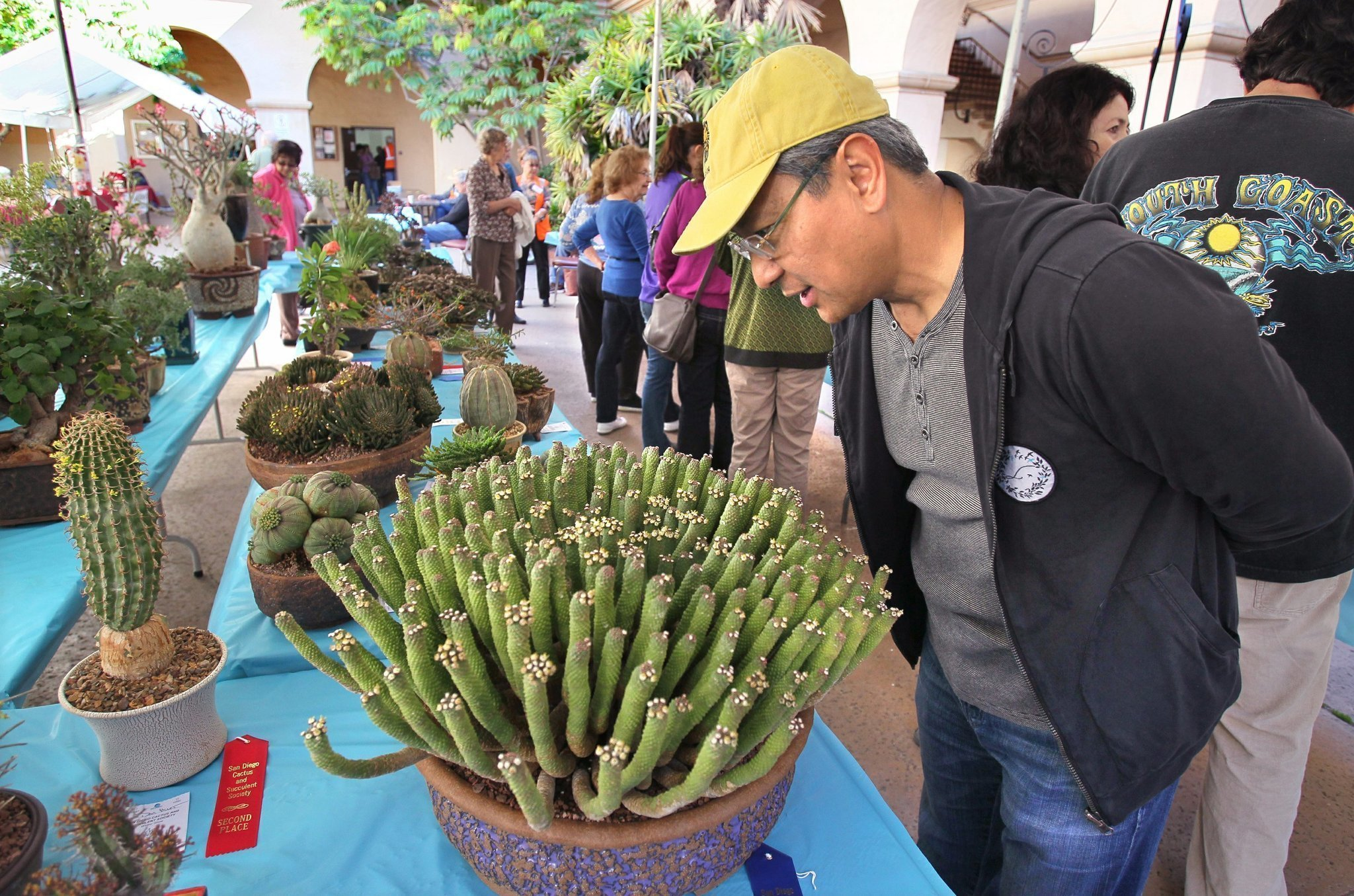 Passions Run Deep For Strange Succulents