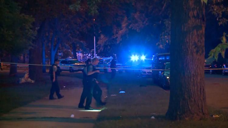 Fatal shooting in Ogden Park