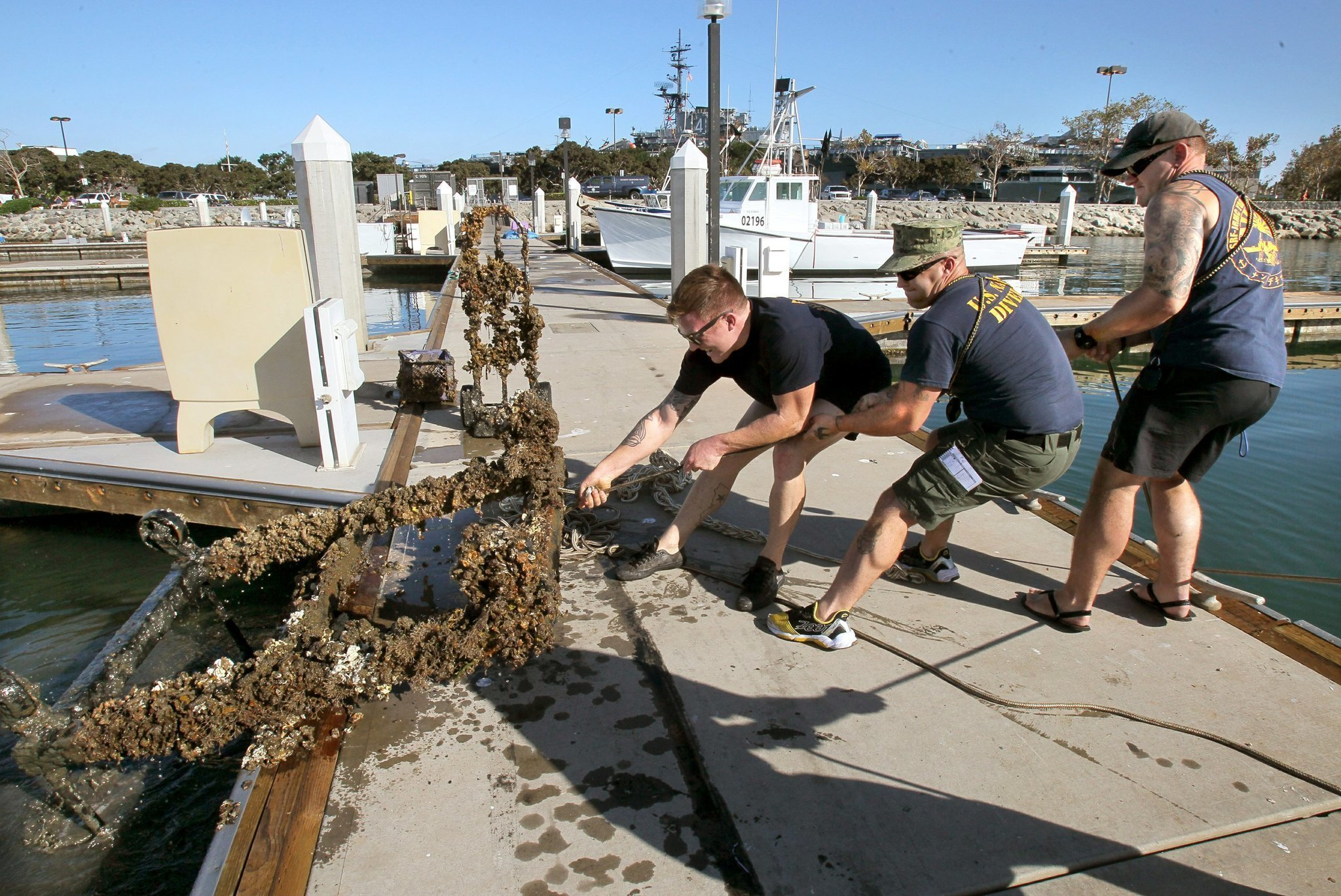 Bay cleanup yields waste cornucopia the san diego union for Mattress cleaning service san diego