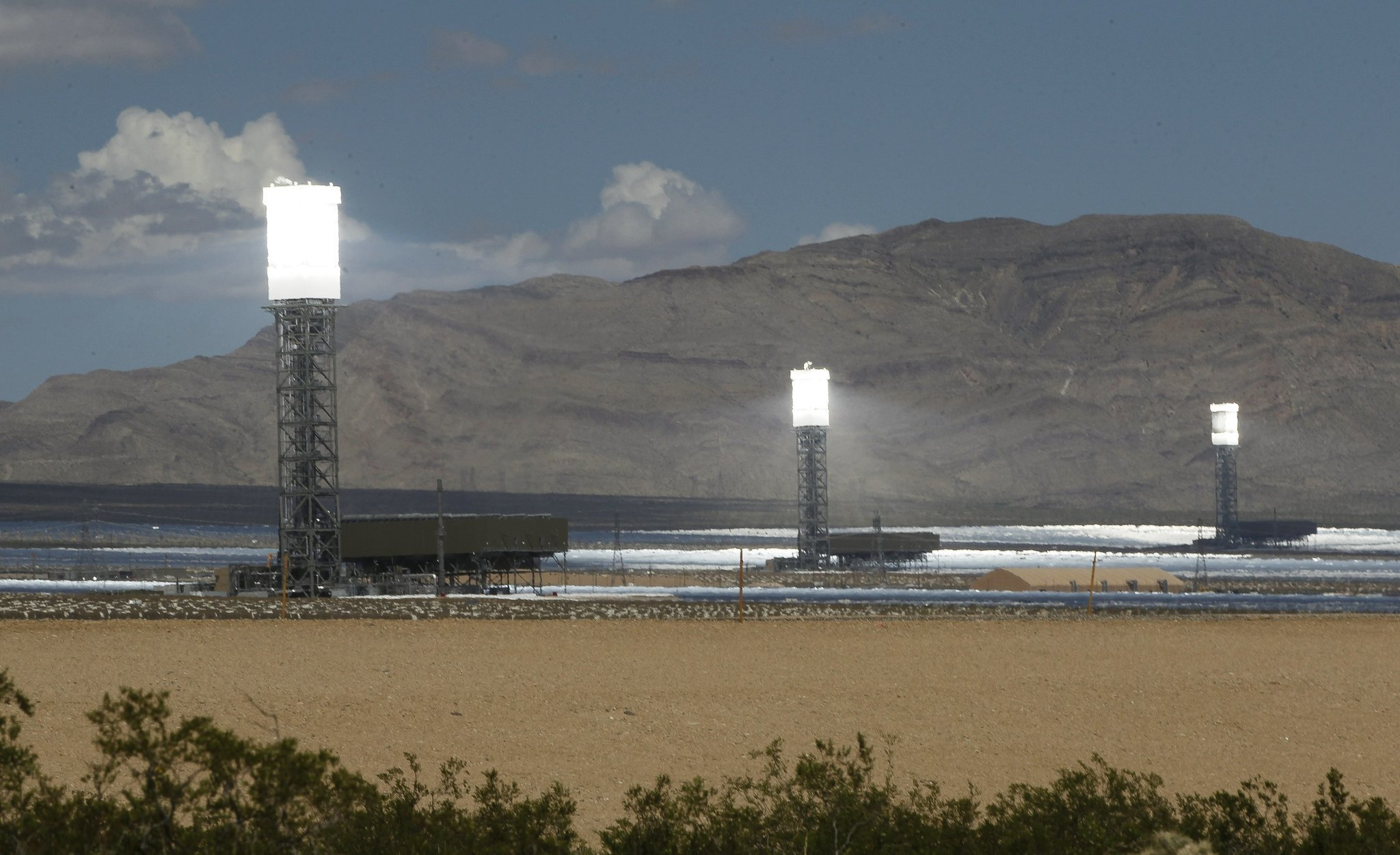 Giant solar plant said to fry flying birds The San Diego Union