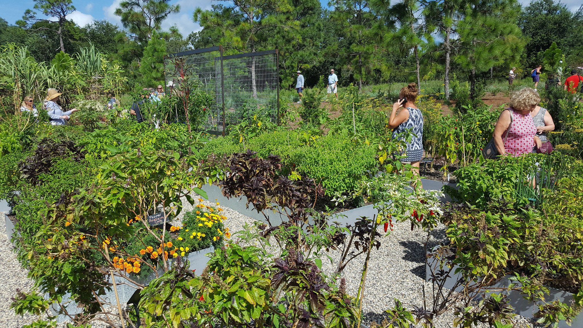 Bok Tower Gardens opens dedicates new garden space