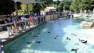 Maryland Zoo in Baltimore and National Aquarium win national awards