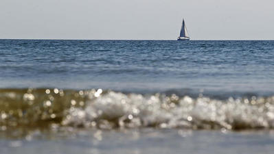 Researchers: Strong, positive trends for Chesapeake Bay cleanup